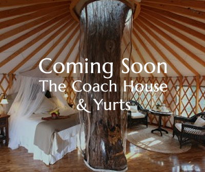 Yurt in North Wales